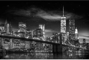 POSTER NEW-YORK-FREEDOM-TOWER  61 X 91.5 CM